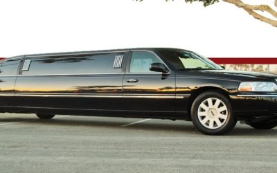 Limousine per feste
