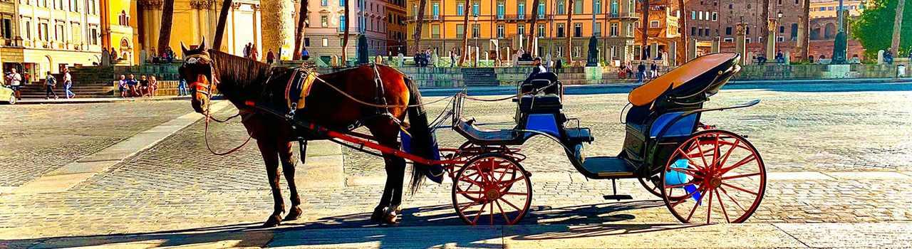 Passeggiata in carrozza roma
